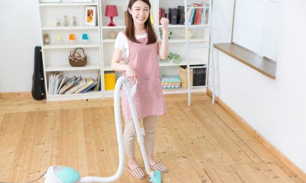 Best Lightweight Vacuum Reviews – 5 of Your Top Options