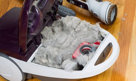 Vacuum Repair – the Ultimate DIY Guide