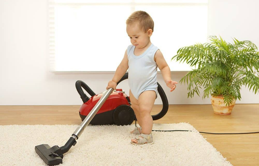 What is the best vacuum for carpet home vacuum zone for Whats the best carpet
