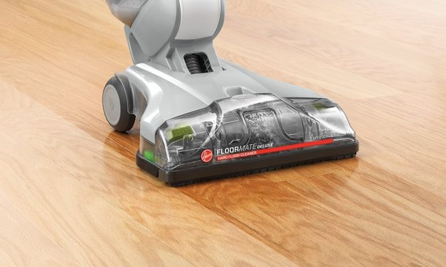 Steam Cleaners Home Vacuum Zone