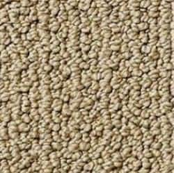 level loop carpet style