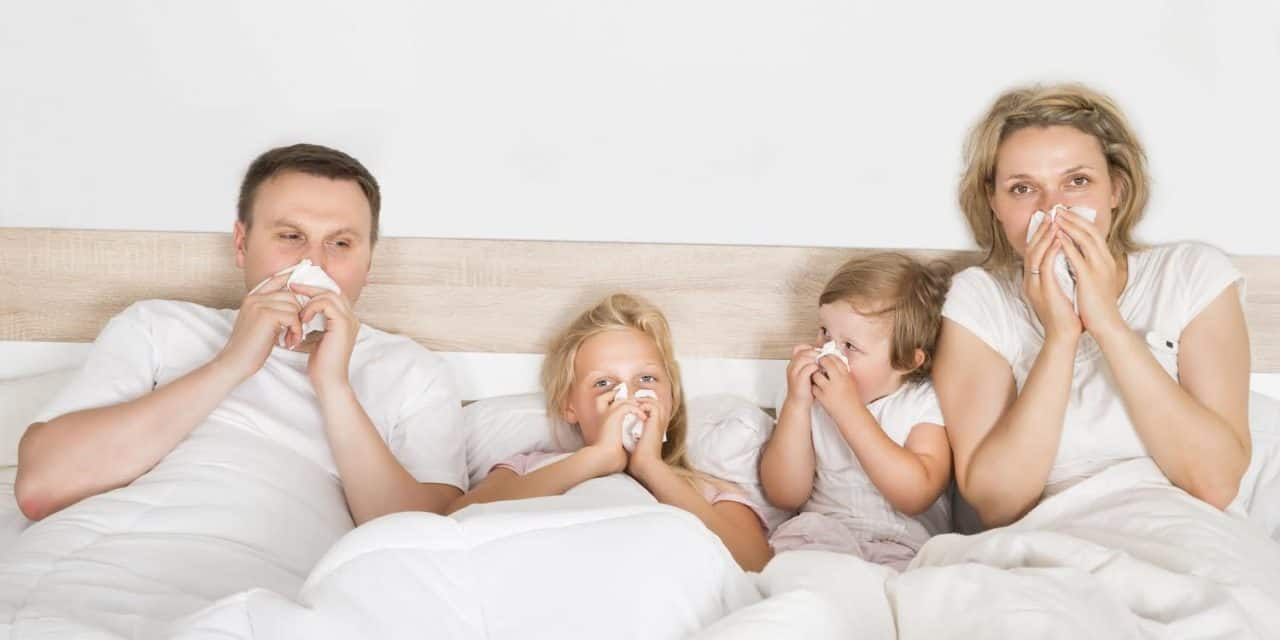 Home Cleaning and Maintenance Tips to Reduce Allergies and Asthma