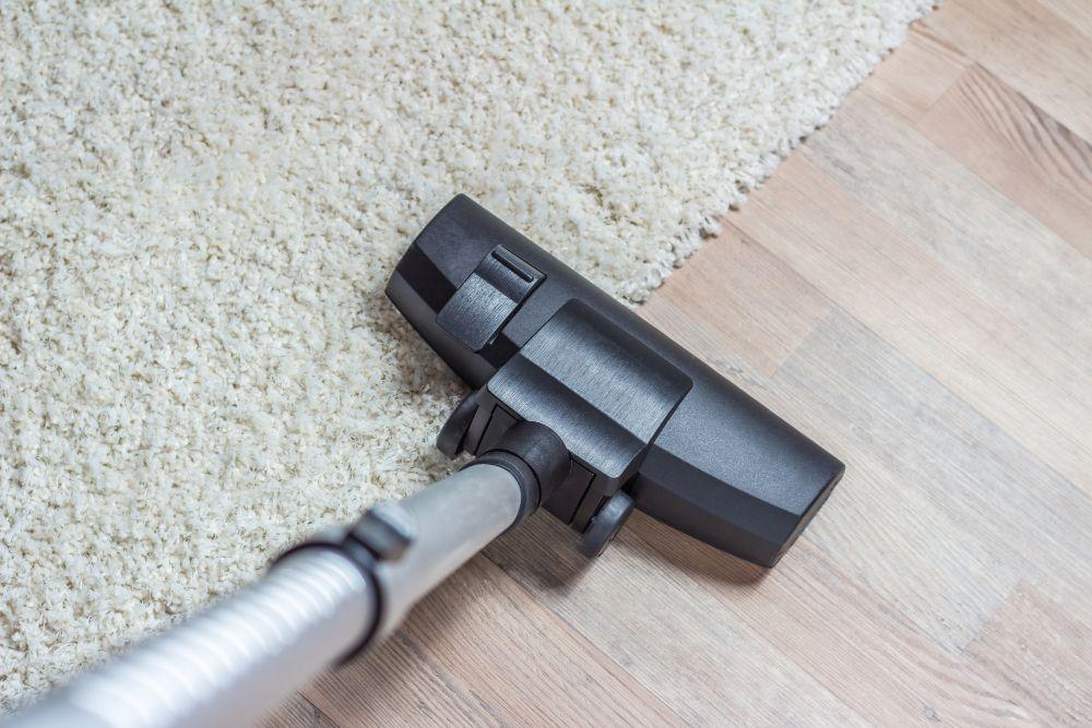 Comparison between Kenmore Miele Vacuum